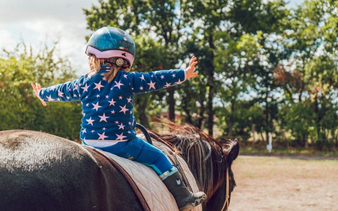 Vask av hestedekken – best tips og råd
